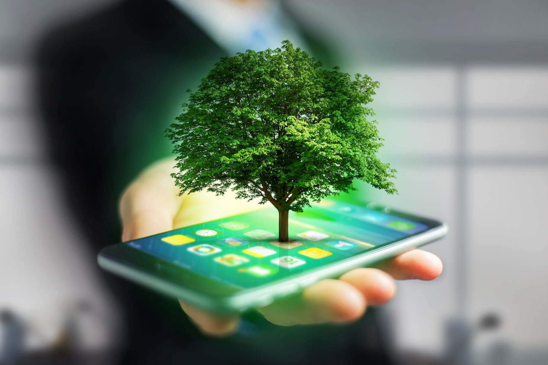 Technology and the environment .